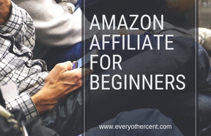 Amazon Affiliate for Beginners: See my Results!